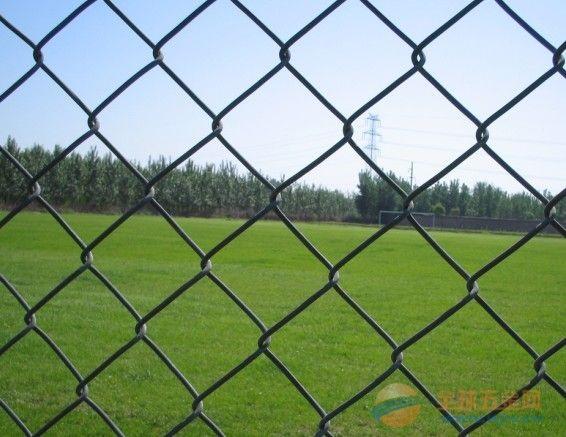 包塑勾花网球场围网 温州镀锌勾花网价格多少