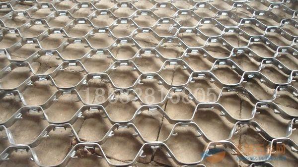 河北龟甲网
