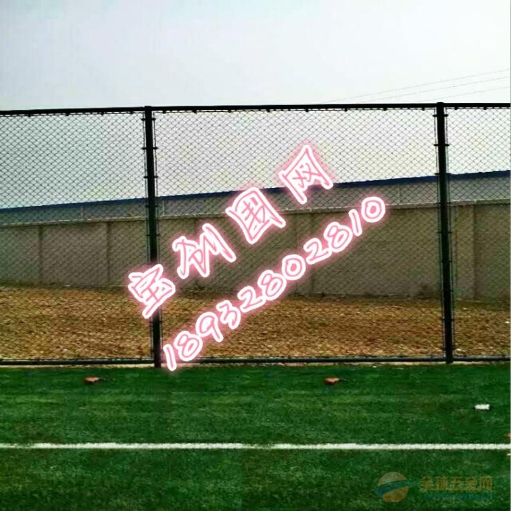 组装式球场围网安装 组装式球场围网材质 组装式球场围网发展趋势