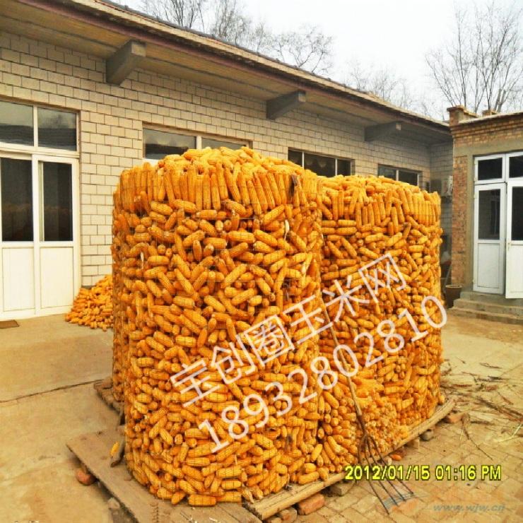 304不锈钢电焊网厂 北京不锈钢电焊网 不锈钢电焊网图片