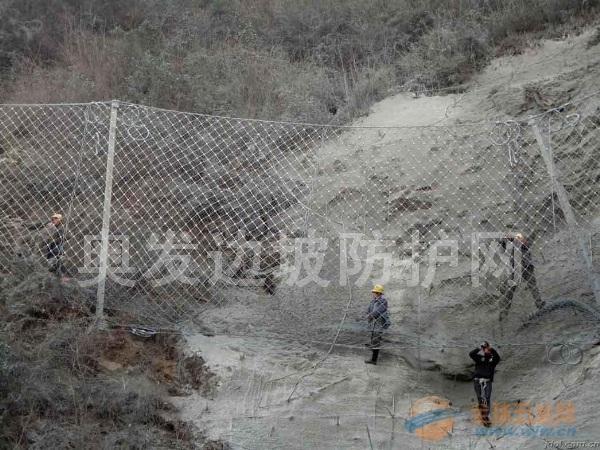 温州被动边坡防护网哪家公司产品质量更好?