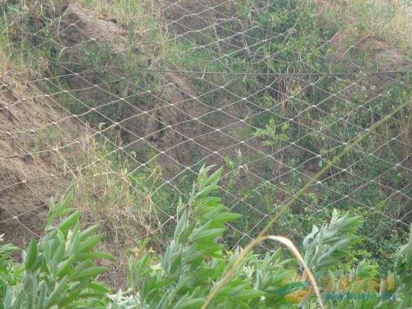 山体防护勾花网价格