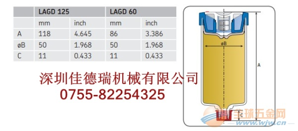 LAGD125/WA2/SKF自动注油-betway必威官网登陆特价热卖中