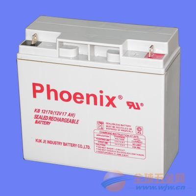 北京菲尼克斯电池