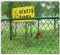 供应养殖场围栏网