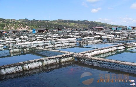 网箱,养鱼网箱多少钱,养鱼网箱价格