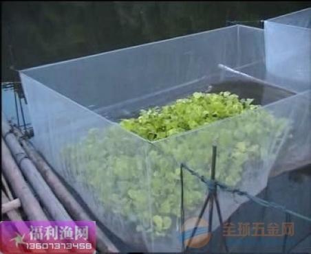网箱-网箱养鱼-网箱价格-养鱼网箱价格-网箱出厂价格