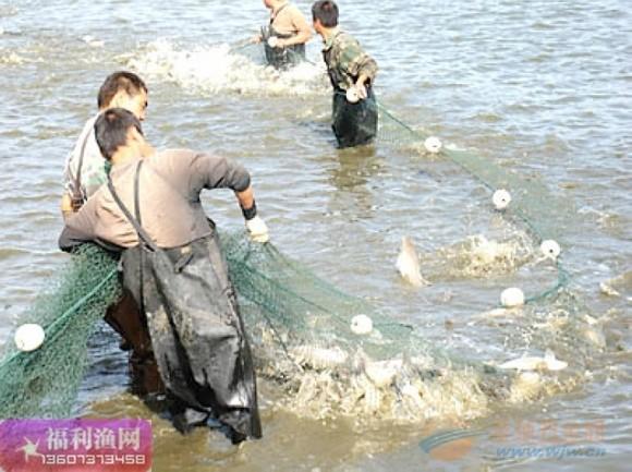 渔具,渔具批发,渔具店,渔具价格,渔具网