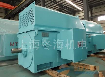 现货供应天长市6KV 8极高压永磁电机TYX4006-8-220KW