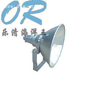 NTC9210 防震型投光灯 NTC9200 BTC8200 BTC8210
