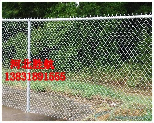 体育场防护网价格☆钢丝防护围栏网◇菱形编织网