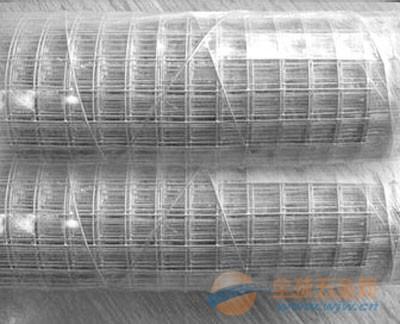 深圳镀锌钢丝网电焊网 吊顶钢丝网焊接网片 镀锌焊接网报价 铁丝网制造