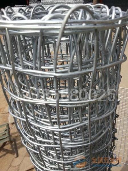 阳泉改拔丝煤矿经纬网-镀锌铁丝经纬网-编织经纬网
