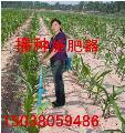安徽蔬菜追肥机 追肥机厂家