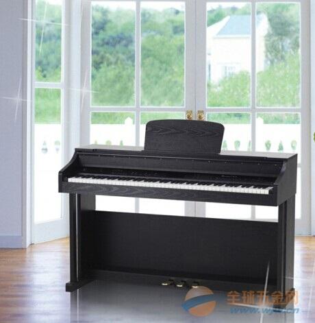 广州电钢琴批发V-10