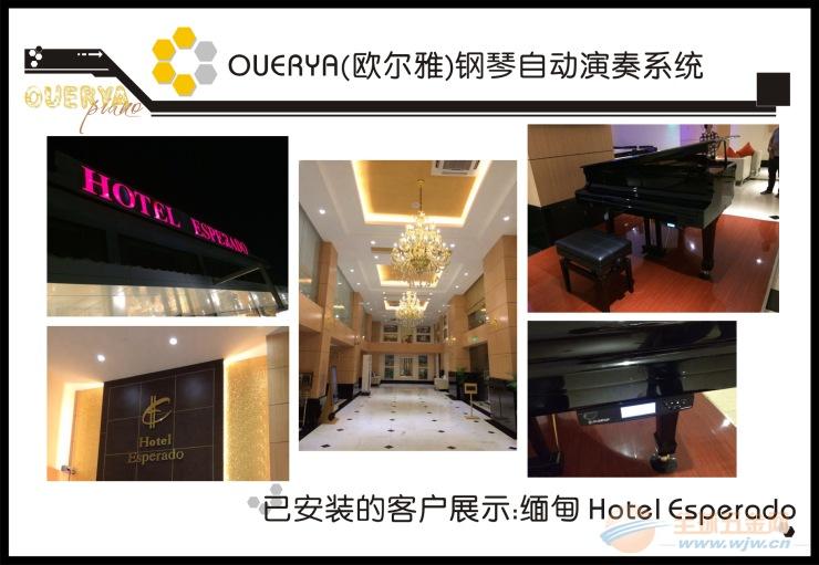 四川钢琴自动演奏系统的演奏乐队服务