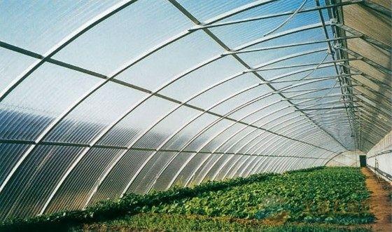 怎样建造日光温室大棚|蔬菜大棚材料|温室材料