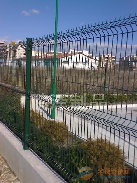 铁丝网直接生产*养鸡铁丝网直接生产*养鸡用围栏网直接生产销售