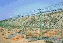 绿色公路防护网
