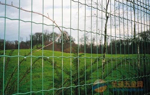 荷兰网 勾花网 草原保护网