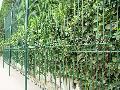 北京哪有卖果园防护网的?北京哪的果园防护铁丝网便宜?