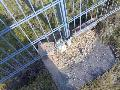 哪有低价铁丝网围栏卖-铁丝网护栏网专卖店*生产各种规格铁丝网护栏网