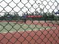 球场护栏网直接生产商