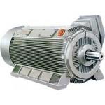 成都电机 供应YJK系列紧凑型高压三相异步电动机 山东华力电机