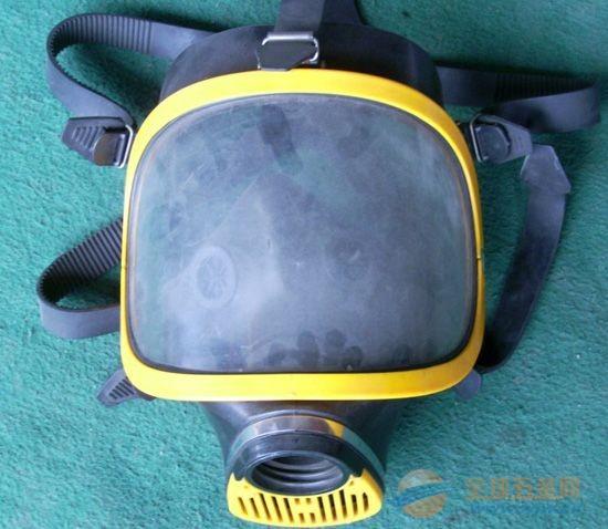 成都腾飞达劳保制品 防护系列 防毒面具 质优价廉