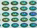 供应温州驰铭激光防伪标签 防伪标签电码防伪标签激光防伪商标