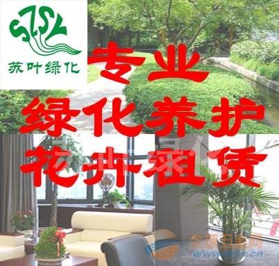 苏州租花|苏州租植物|苏州租绿植