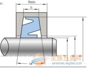 原装进口T4型轴往复运动骨架油封