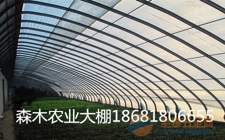 咸阳农业大棚厂、咸阳大棚骨架价格、咸阳双膜温室大棚