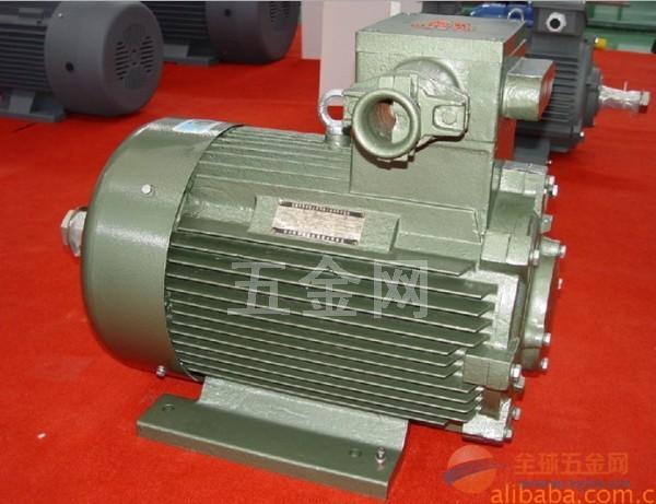 YBZ电机 销售YBZS电机 【现货】起重防爆双速电电机