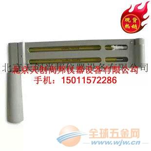 DHM1吊链式温湿度计优势 DHM1吊链式温湿度计现货供应