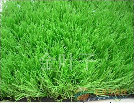 重庆人造草坪多少钱
