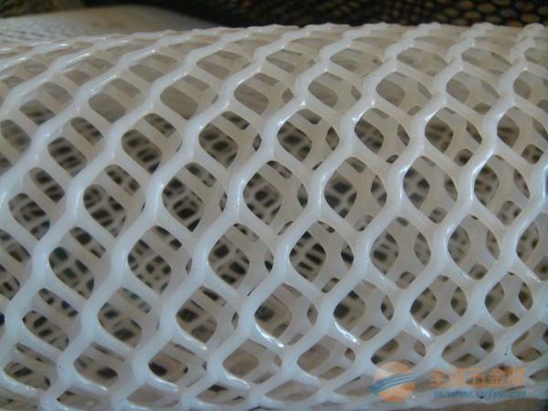 舟山【养殖用养殖塑料网】台州/丽水【塑料网万能网】塑料平网批发