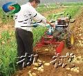 小型收获机 土豆收获机 花生收获机 柴油收获机