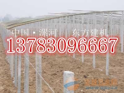 温室大棚柱子机围墙立柱机图片
