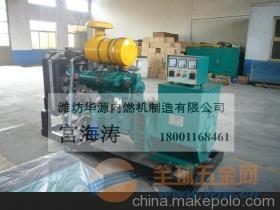英卓EN20TD静音型汽油发电机组20kw