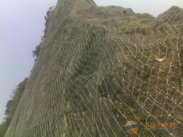 丹东山坡绿化主动防护网价格