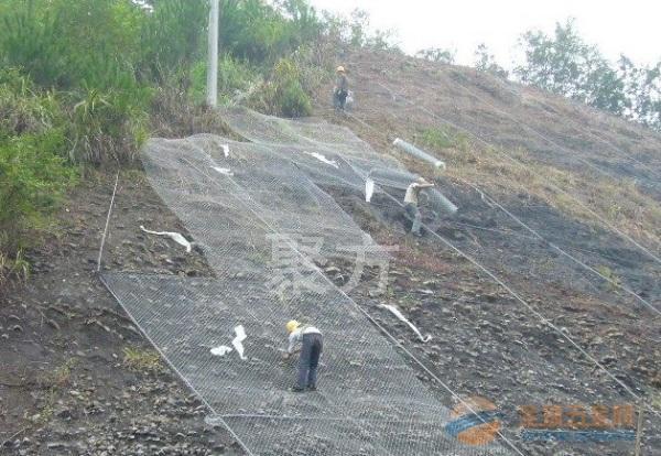 草籽喷播铁丝网图片_护坡绿化铁丝网报价