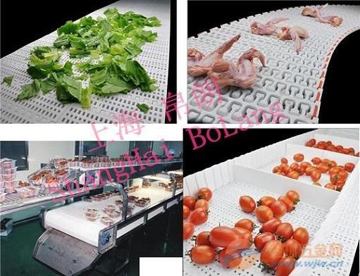 上海食品级塑料网链报价