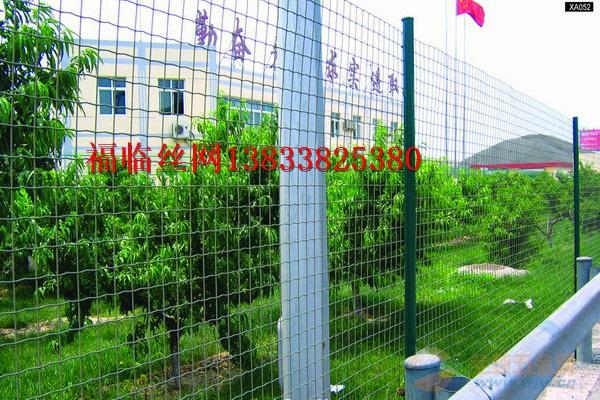 荷兰网铁丝防护养殖鸡护栏