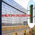 荷兰网铁丝围栏网果园网养殖网