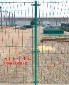 张家界浸塑护栏网厂家 优质的浸塑护栏网 双丝护栏