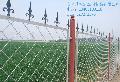 安平厂家生产供应美格网