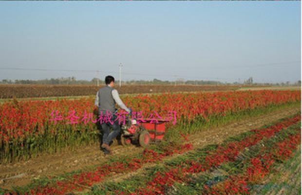 高阳县秸秆收割机玉米小型收割机