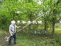 高枝锯链条安装视频 正规厂家发货高枝锯 长枝油锯