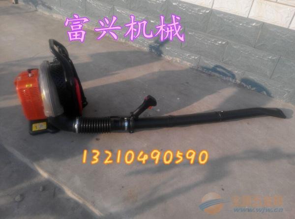 温州四冲程风力灭火机 汽油吹尘机